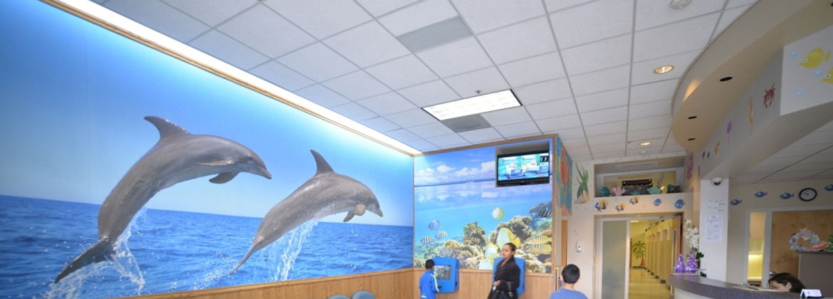 San Jose Dolphin Dental